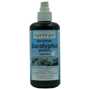 Eau florale d'Eucalyptus Globulus – Astérale
